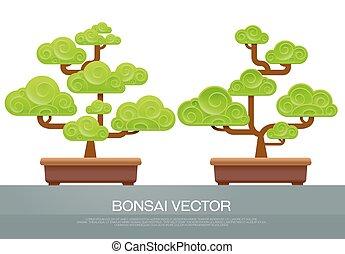 bonsai two style in pot
