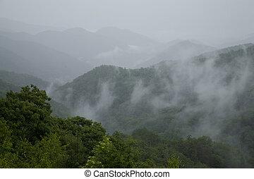 Great Smoky Mtns Nat. Park, TN-NC