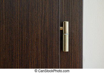 Golden door hinge on brown wooden door.