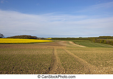 yorkshire wolds agriculture - yorkshire wolds agricultural...