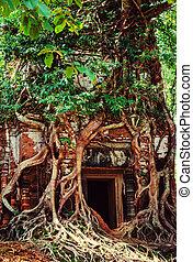 Angkor - Ancient ruins of Angkor, Cambodia