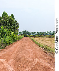 Small dirt road near the paddy field in the countryside of...