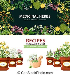 Medicinal Herbs Banners - Color horizontal banners with...