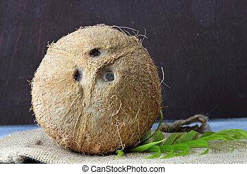 Unbroken Coconut