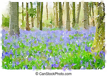 Watercolor painting of bluebell flowers in the woods -...
