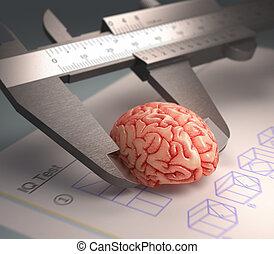 Measuring The Human Intelligence