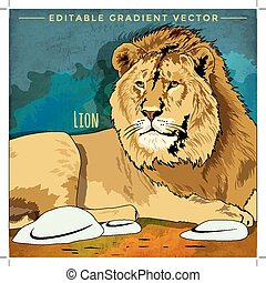 Wild Cats. Lion - Wild cats in the habitat. Lion the King