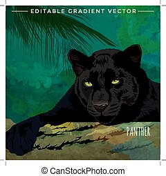 Wild Cats. Panther