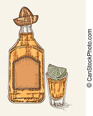 Tequila in bottle and glass Hand drawn tequilan drink vector...