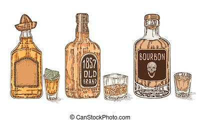 Hand drawn whiskey and tequila in bottle and glass Vector...