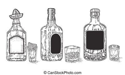 Three bottles with strong alcohol. Hand drawn whiskey and...