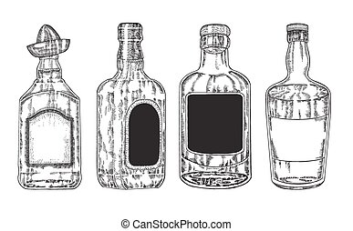 Hand drawn whiskey and tequila in bottle Sketch style
