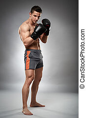 Kickboxer in guard stance wearing gloves on gray background