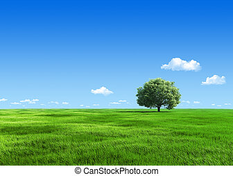 6000px nature collection - Green meadow 1 tree template -...