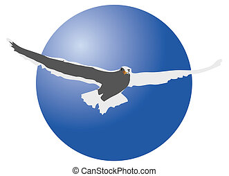 Seagull Illustration - illustration of a seagull in a circle...