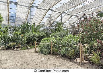 Botanical Garden Greenhouse. - Botanical garden with exotic...