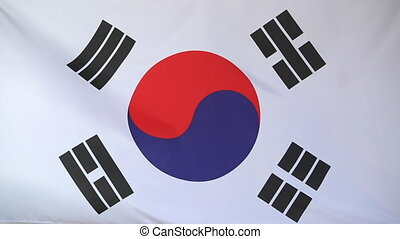 National flag of South Korea in the wind