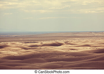 Gobi desert - Dunes of the Gobi desert