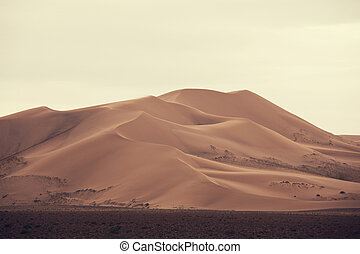 Gobi desert - Dunes of the Gobi desert