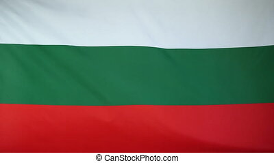 Bulgaria Flag real fabric close up - Textile flag of...