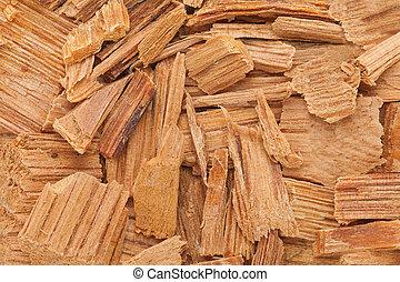 Himalayan cedar (Cedrus deodara). - Himalayan cedar or...