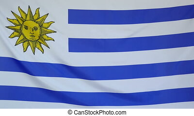 Uruguay Flag real fabric close up - Textile flag of Uruguay...