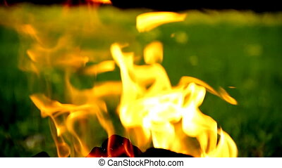 Fire on grass background