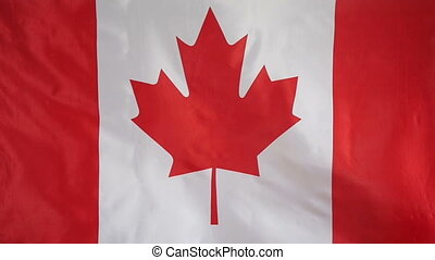 Slowmotion textile Flag of Canada - Slowmotion of a real...