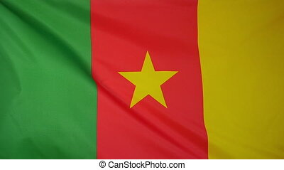 Slowmotion textile Flag Cameroon - Slowmotion of a real...