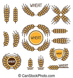 Design elements with wheat Agricultural image natural ears...