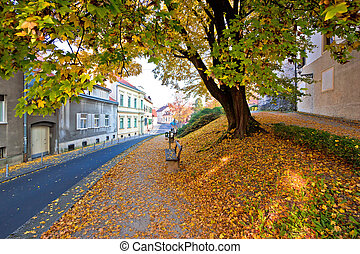 Zagreb historic upper town autumn view