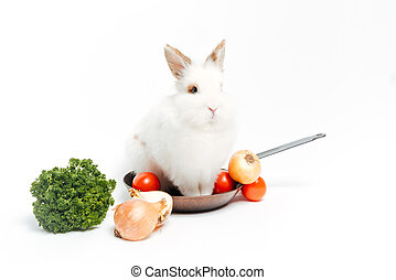 Rabbit inside a frying pan and vegetables isolated on a...