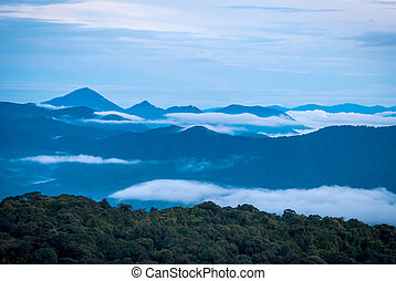 Sunrise over jungle in cameron highlands, Malaysia - Sunrise...