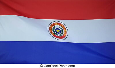 Slowmotion textile Flag Paraguay - Slowmotion of a real...