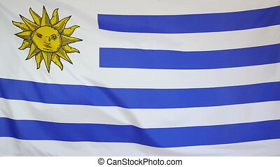 Slowmotion textile Flag Uruguay - Slowmotion of a real...