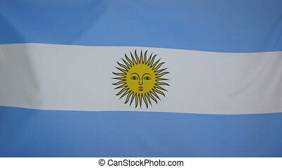 Argentina Flag real fabric close 4K - Textile flag of...