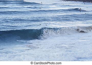 Küste bei Noosa, Noosa Head, eine der schönsten...