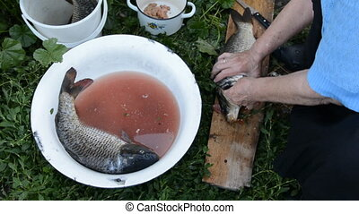 Hand of an old woman cleans a knife the scales of carp...