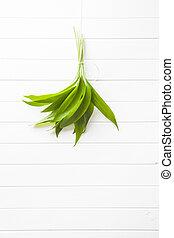 Fresh ramsons leaves. Wild garlic leaves. Healthy vegetable.
