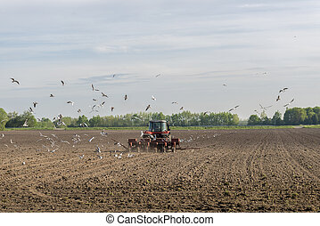 Red tractor ploughing on the arable land