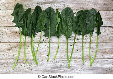 raw spinach on a rustic white table - high-angle shot of...