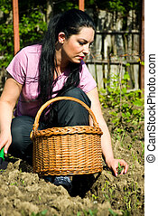 Young woman planting in a garden
