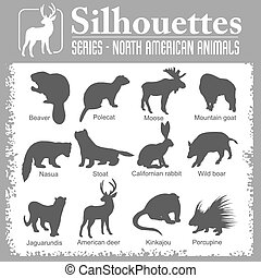 Silhouettes - North American animals - Silhouettes -...