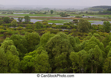 Panorama meander river with reed on northern part of...