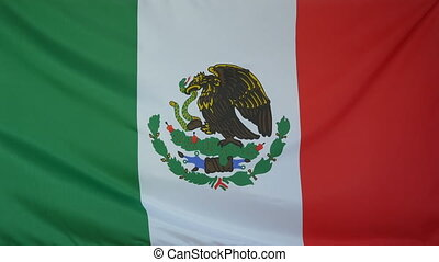 Mexico Flag real fabric Close up 4K - Textile flag of Mexico...