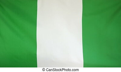 Nigeria Flag real fabric Closeup 4K - Textile flag of...