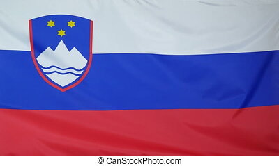 Slovenia Flag real fabric close 4K - Textile flag of...