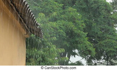 Heavy Rainfall - Shot with green trees, building roof and...