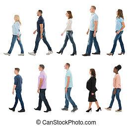 Group Of People Walking In Line