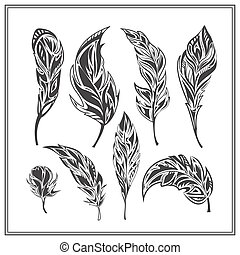 Set of black decorative feathers on a white background